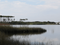 Explore Coastal Dune Lakes